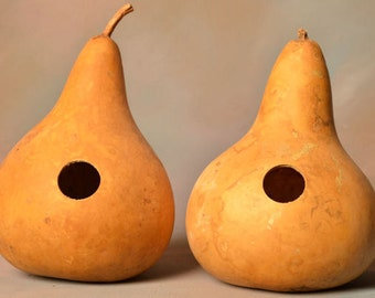 Two (2) Gourd Birdhouses, natural undecorated gourds, martin house gourd birdhouses, kettle gourd birdhouse