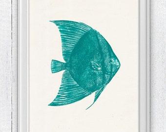 Seafoam Angel fish - Wall decor poster  Sea fish home decor -Bathroom wall decoration sea life print SAS041
