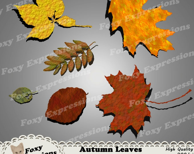Autumn Leaves Digital Clipart in shades of red, orange, yellow, green and brown perfect for any project. Leaves come with drop shadow.