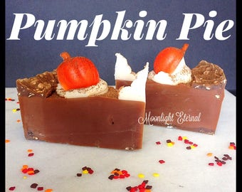 Pumpkin Pie Soap Slice - Smells Like Pumpkin Pie - Soap Pie Slice - Artisan Soap - Handmade Soap - With Silk!