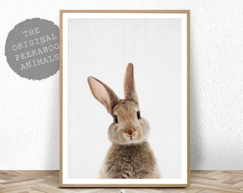 Nursery Bunny Print, Printable Animal, Rabbit Wall Art Poster, Woodland Decor, Baby Shower, Digital Download, Modern Baby Room Bunny Rabbit
