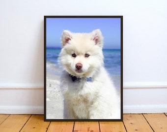 White Fluffy Puppy,Art,Photo,Digital,Download,Decor,Home,Office,Tropical,Dusk,Ocean,Animals