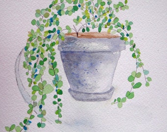 Green leafed plant in grey pot, round leaves, spring green, garden, whimsical, square art, nature, green leaves, cool colors