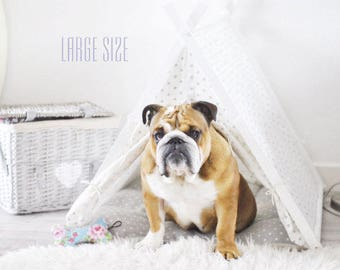 Dog tent - Gray Dot teepee tent (Large size, Extra large size)