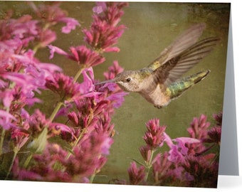 Hummingbird at Agastache - blank note card, Gifts for her, Gifts for mom, Gifts for bird lovers, Gifts for nature lovers