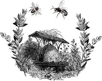 Bee Print Digital Bee Hive Bee Poster Black and White Vintage Bee Print