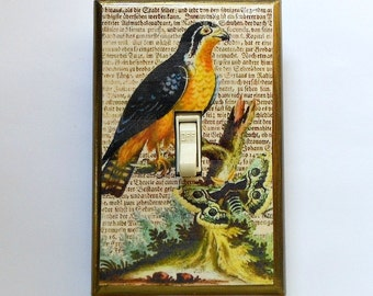 MATCHING SCREWS- Bird light switch plates Latin text bird prints Asian bird prints Asian landscapes tropical birds bird nests peacocks birds