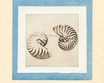 "NAUTILUS SHELLS (yin yang),   8"" x 8"" Art Print on 80lb fine art paper from handprinted intaglio etching and monoprint"