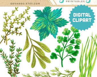 HERBS Digital Clipart Instant Download Illustration Parsley Sage Basil Rosemary Chives Thyme Dill Cooking Kitchen Art Wall Decor Clip Art