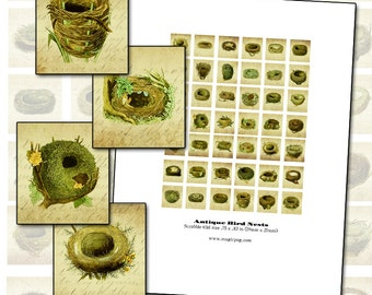 Altered Art Antique Bird Nest Scrabble tile digital collage sheet .75 x .83 in 19mm x 21mm 19x21 mm
