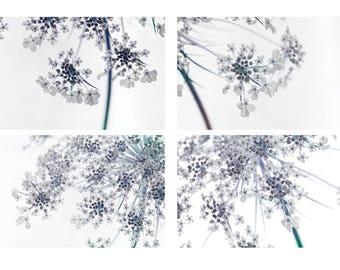 Queen Anne's Lace Print Set, Four Minimalist Modern Art Prints, Abstract Art, Flower Photography,  Blue Wall Decor