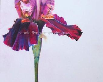 Red Velvet Iris Print
