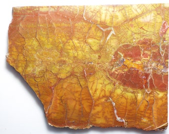 Nice, Large SPIDERWEB jasper slab for cabbing/lapidary