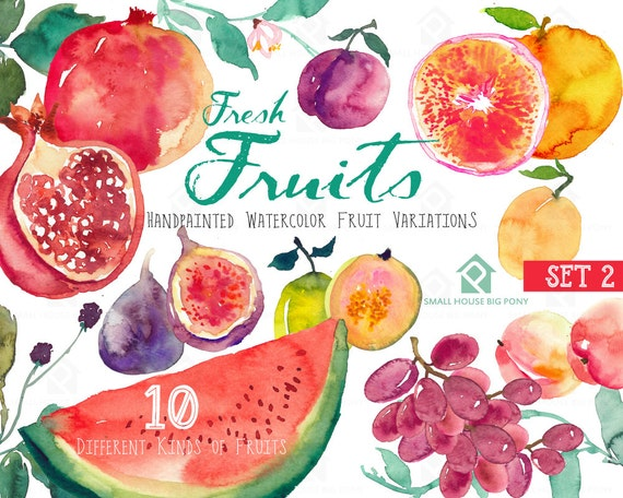 Digital watercolor fruits, pomegranate, fig, plum, grapes, guava, grapefruit, peach, watermelon, pear, download clipart - Fresh Fruits(set2)