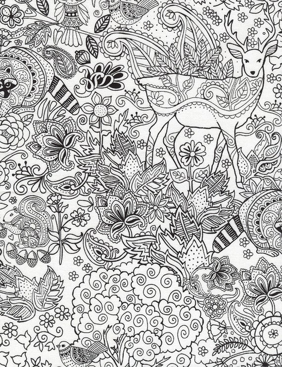 Timeless Treasures Fabric Woodland Coloring on White by Gail Cadden ...