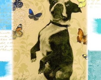 Boston Terrier Birthday Greeting Card. Happy Birthday to my Best Friend.