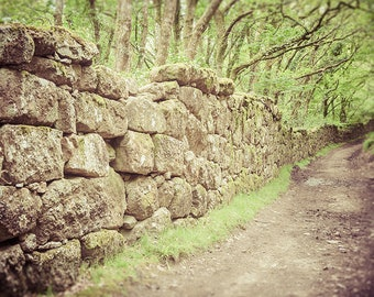 """Ancient Path Art Print, Hiking Trail Photography, Dartmoor Fine Art Photography, Stone Wall Art, """"Not All Who Wander Are Lost"""""""