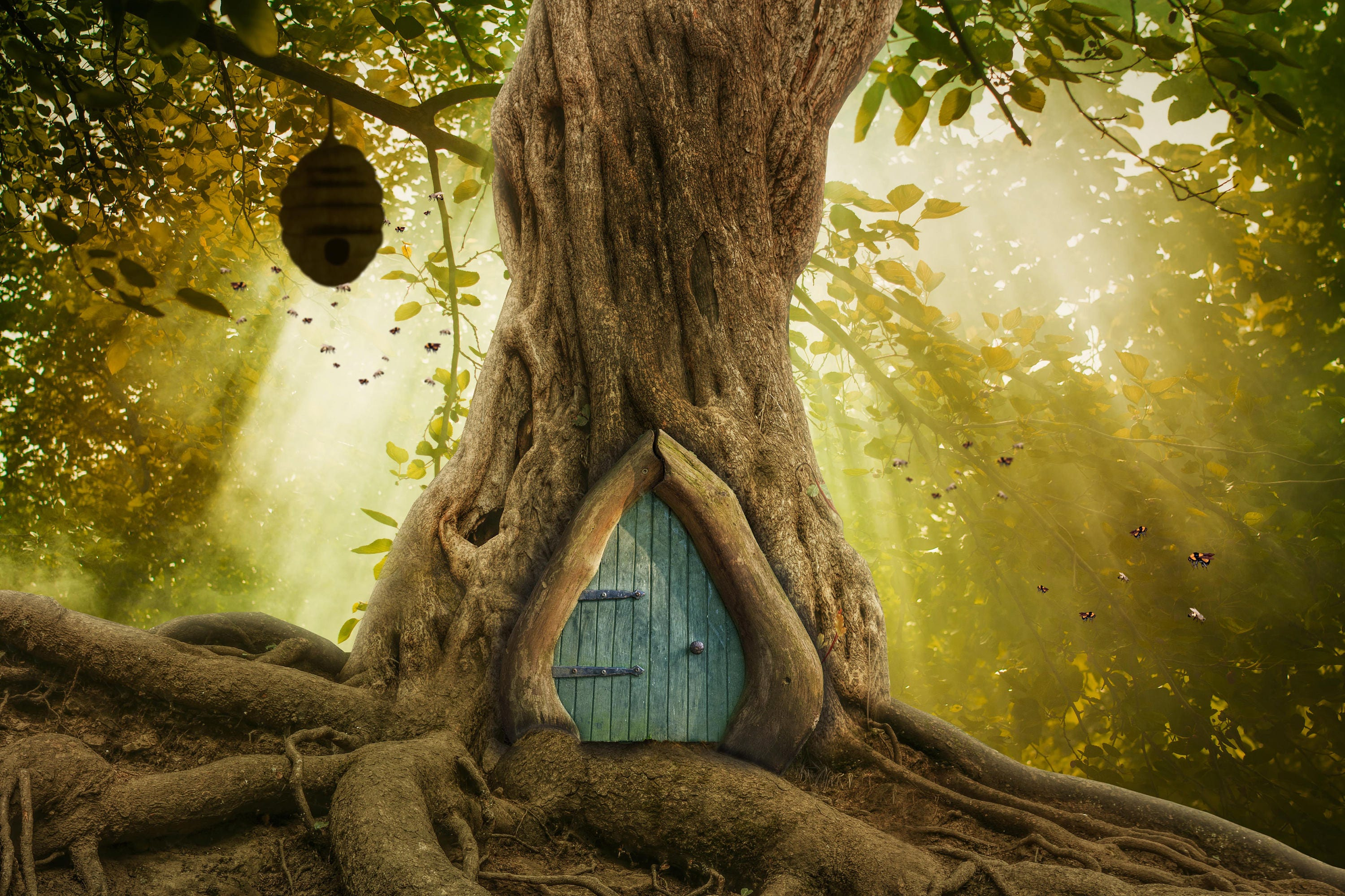 Winnie The Pooh Forest Background: Whimsical Forest Tree With Door / Winnie The Pooh Digital
