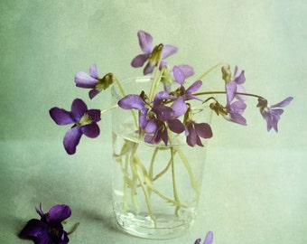 mint green violet purple / flower photography / wall art / romantic art / dreamy photography / floral / spring art / photography
