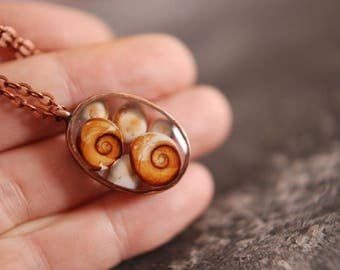 St Lucia 28 x 20 mm eyes shells necklace