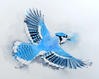 Flying Blue Jay - 9x12 Original Watercolor Painting