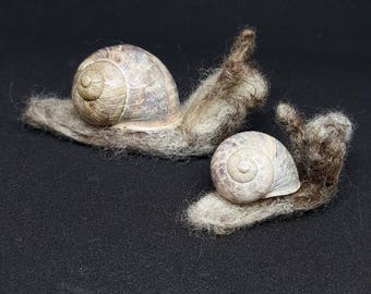 Needle felted lifesize snails in real shells