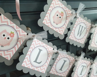 Welcome Little Miss banner, Welcome Baby banner, Owl baby shower, Owl party banner, Owl banner, pink and grey