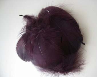 Aubergine Goose Coquille Feathers  / 10 Loose Feathers