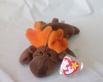 TY Beanie Baby Chocolate, the moose