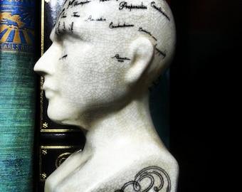Beautiful Phrenology Statue Bust Head Art Antiques Science Unique
