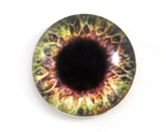 25mm Brown and Cream Glass Eye for Pendant Jewelry Making or Taxidermy Human Fantasy Doll Eyeball Flatback Circle 1 inch