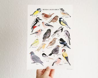 British Birds - Watercolour Art Print - British Nature Print - Bird Illustration - Bird Print - Watercolour Birds - Wildlife Print