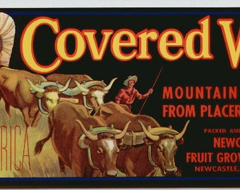 1950s Covered Wagon Oxen Scout Western Placer County California Original Crate Label