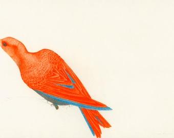 Limited Edition Bird Art Print An Occasional Dream II
