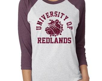 Customized School Spirit Baseball Raglan Shirt|School Mascot Shirt|School Team Shirt