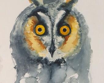 Owl Bird Original Watercolor Painting: Kitchen Nursery Bedroom Bathroom Decor Art
