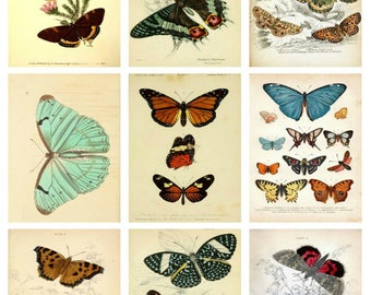 Printed Vintage  Butterflies Collage Sheet   8.5 x 11 for Decoupage, Altered Art, Scrapbooking etc.