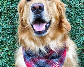 Personalized Grey and Red Plaid Dog Bandana    Flannel Pet Scarf    Personalized Puppy Gift by Three Spoiled Dogs
