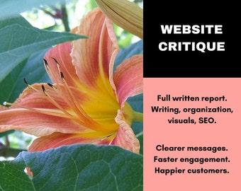 Website Critique - Written Website Review - Full Site Critique - Writing Service - Website SEO Copywriting Service - Website Copy Writer