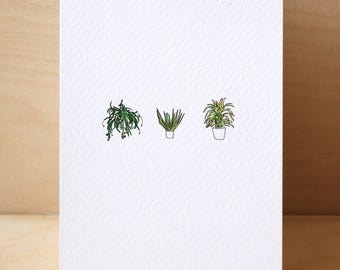 3# House Plants Card