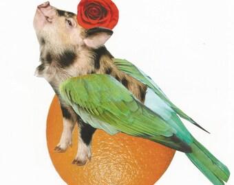 Collage Art Print Pig Wings Rose