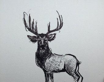Buck fine art paper print