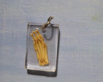 Real Articulated Rat Foot Bones in Resin Necklace Charm