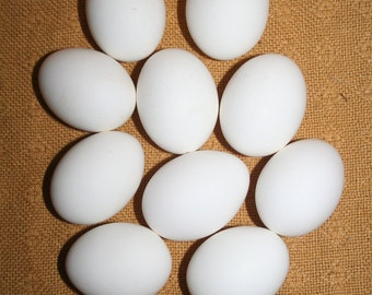 Chicken egg 10 pieces, empty for decorating