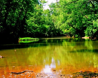 Colorful picture of the waters edge