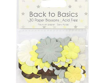 Baby Steps Paper Blossoms Dovecraft Basics 30 Pack Scrapbooking Card Craft