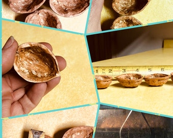 Premium Large Walnut Shell Halves for ornaments and decorative crafts