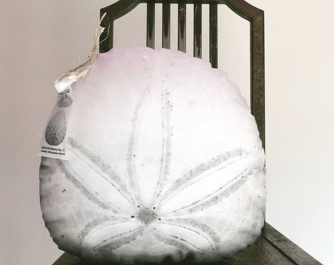 Sand dollar pillow made to order