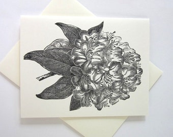 Rhododendron Flower Cards Set of 10 in White or Light Ivory with Matching Envelopes