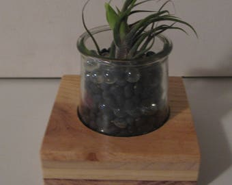 Vineyard Studio Jar Planter